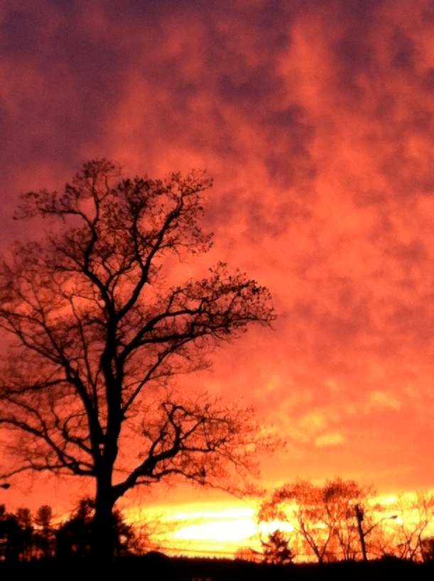 UNH Sunset